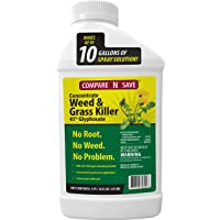 Ragan And Massey 75322 Comp N Save 16oz 41% Glyph Grs Kill Glyphosate Concentrate...