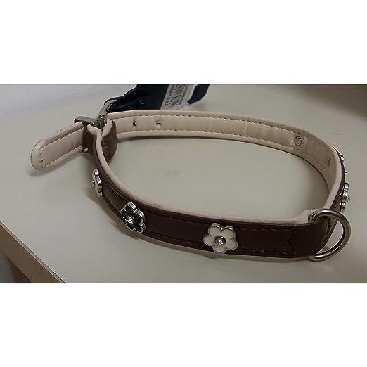 Collar para perro ferribiella 1.6 x 40: Amazon.es: Jardín