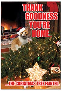 NobleWorks, Tree Fainted Cat - 12 Boxed Christmas Greeting Cards with Envelopes - Pet Kitten and Xmas Tree Humor, Stationery Set B2546XS