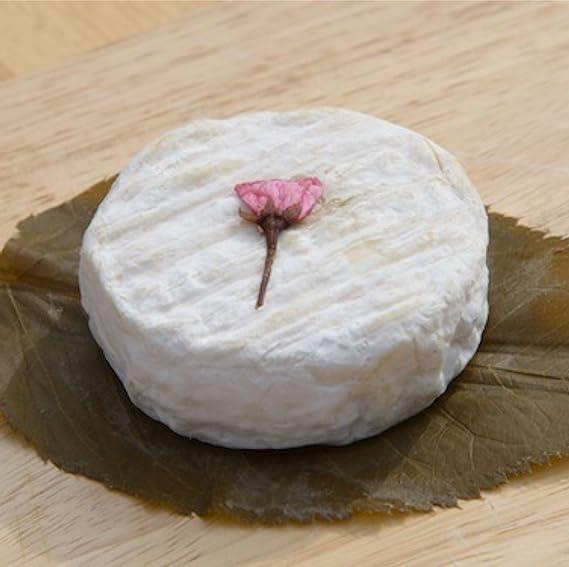 Tabletas de cuajo Titanium Rennet para cualquier tipo de queso, 10 unidades para 500 ml de leche.