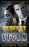 A PERFECT STORM (The Storm Series Book 2)