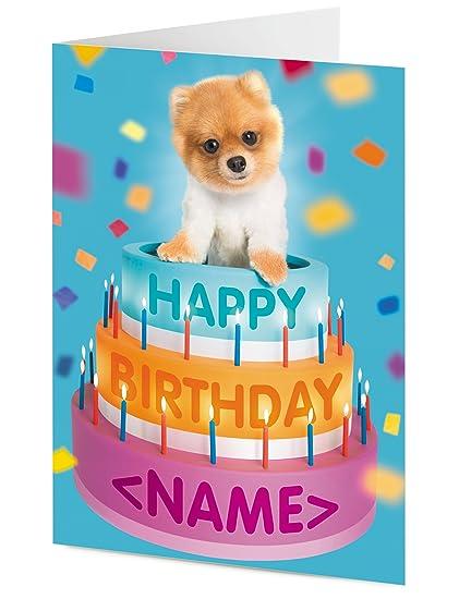 Personaliseitonline Feliz cumpleaños Pomeranian lindos ...