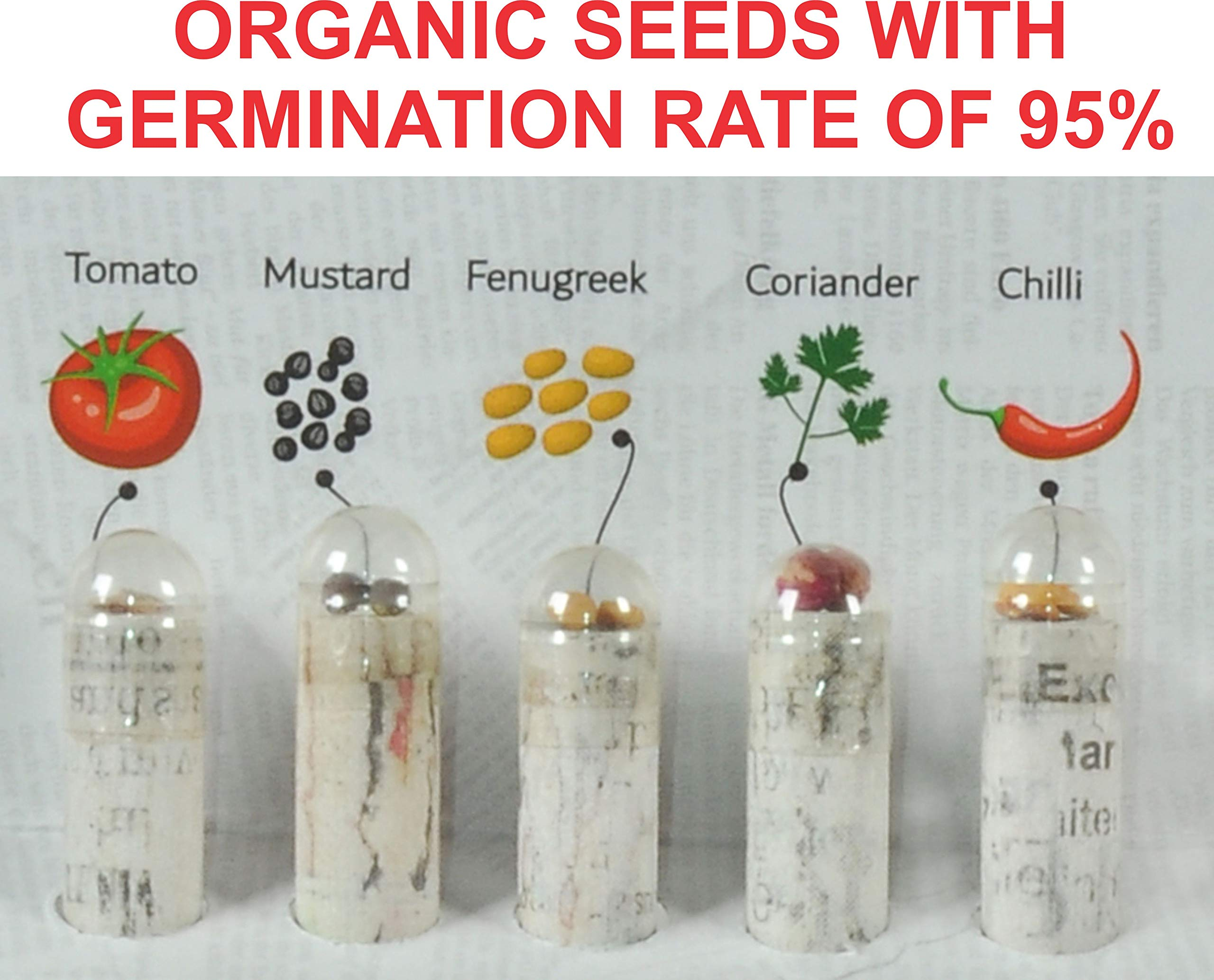 WOOD FREE PLANTABLE PENCIL HB#2 EXTRA DARK 36 Pencils + 5 Silicon Gripers FREE l 100% Recycled Newspapers l 100% Eco Friendly l 5 Assorted Seeds- TOMATO   FENUGREEK   CORIANDER   CHILI   MUSTRAD by SAVE GREEN WORLD (Image #4)