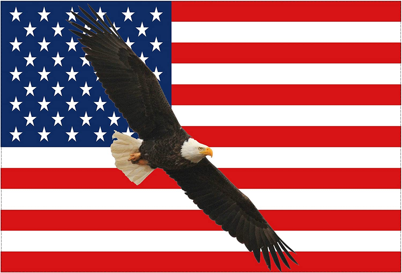USA American Patriotic Eagle Car Truck Window Wall Laptop Vinyl Decal Sticker.