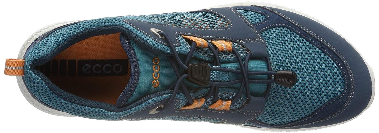 46b3d510c0e ECCO Damen Terracruise Ii Sneaker: Amazon.de: Schuhe & Handtaschen