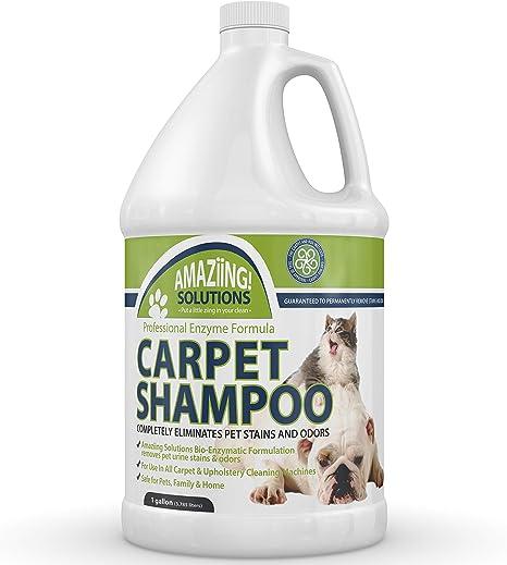 Amazon Com Amaziing Solutions Pet Carpet Shampoo Odor