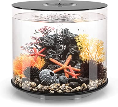 Biorb Tube 9-Gallon Nano Reef Tank