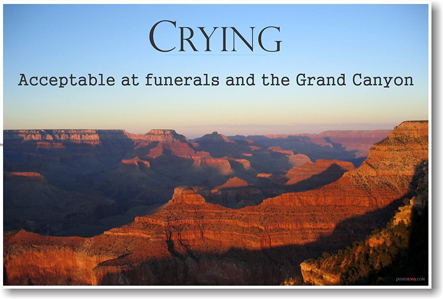 Crying Acceptable At Funerals and the Grand Canyon - NEW Humorous Ron  Swanson Quote Poster