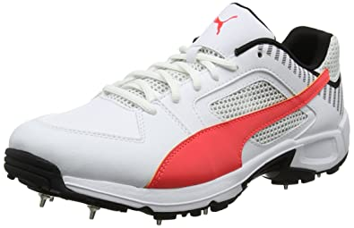 5093d295db7 Puma Men s Team Full Spike Cricket Shoes  Amazon.co.uk  Shoes   Bags