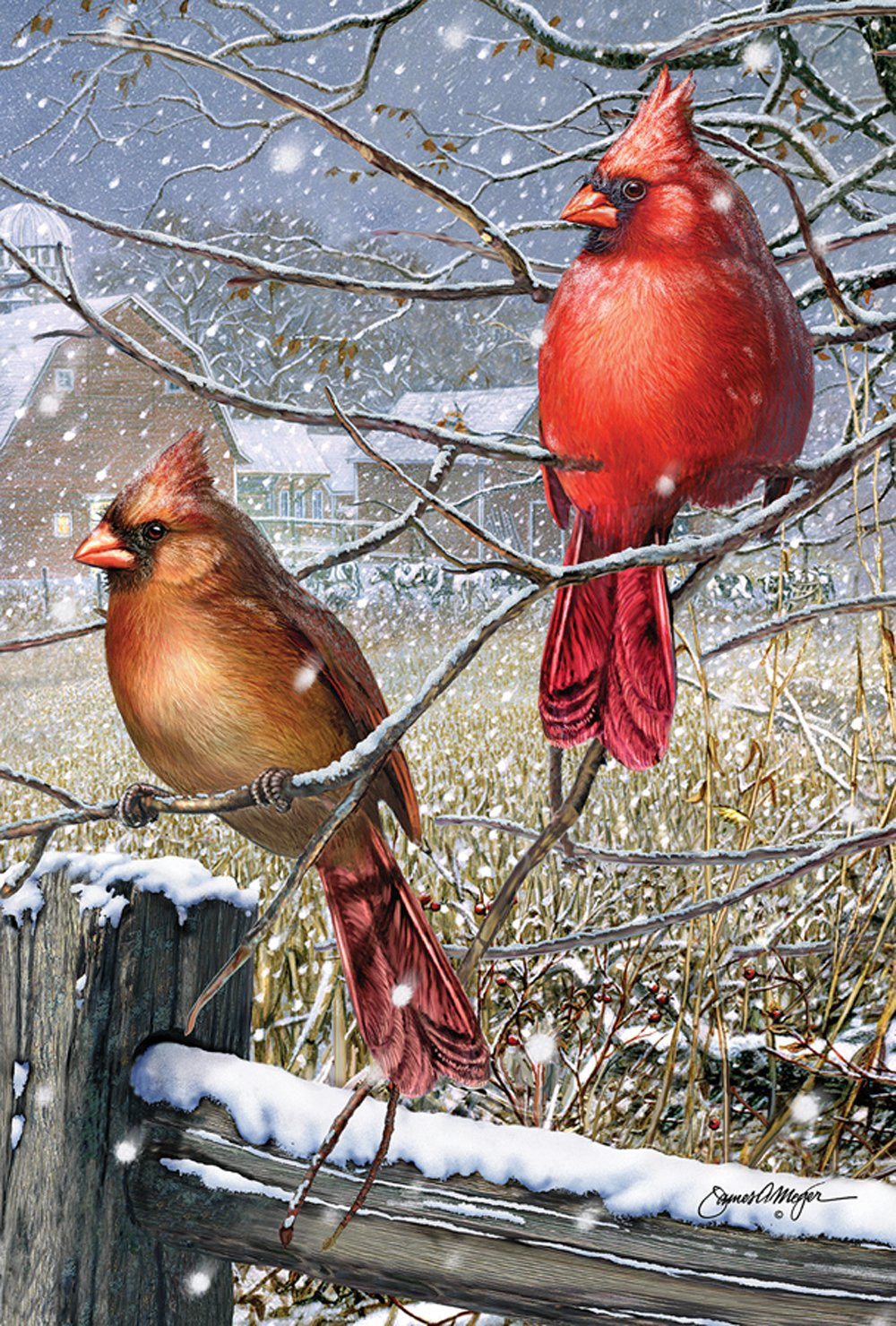 Toland Home Garden Blizzard Buddies 28 x 40 Inch Decorative Winter Cardinal Bird House Flag