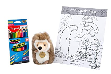 Amazon Com Always Moore Perfect Cute Pet Hedgehog Stuffed Animal