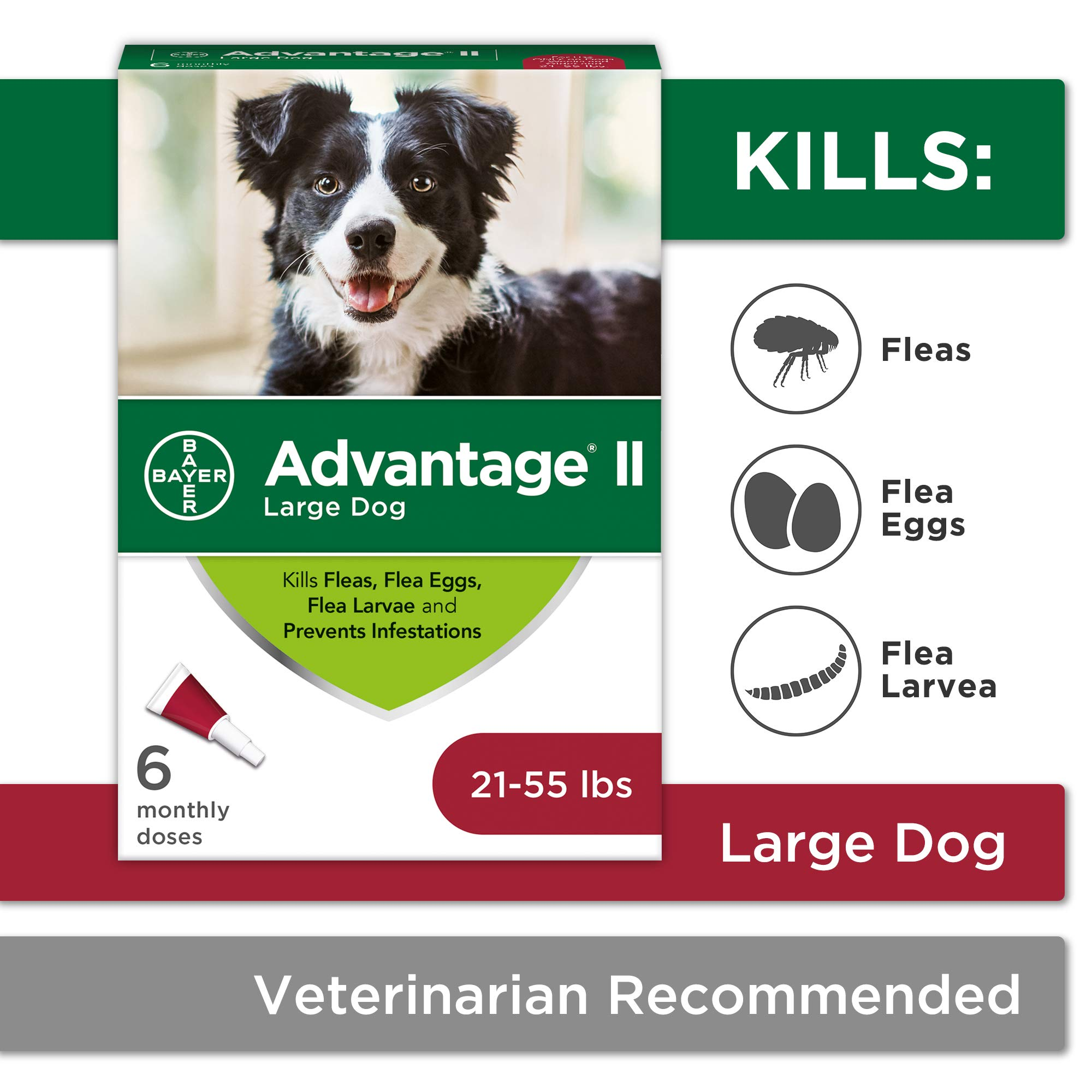 Flea and Lice Treatment for Dogs, 21-55 lb, 6 doses, Advantage II by Bayer Animal Health