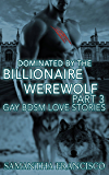 Dominated By The Billionaire Werewolf, Part 3 (Dominated By The Billionaire Wolf)