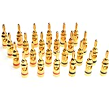 WGGE WG-3334 24k Gold Plated Banana Plugs or Connectors (Open Screw Type) (12 Pair (24 plugs))