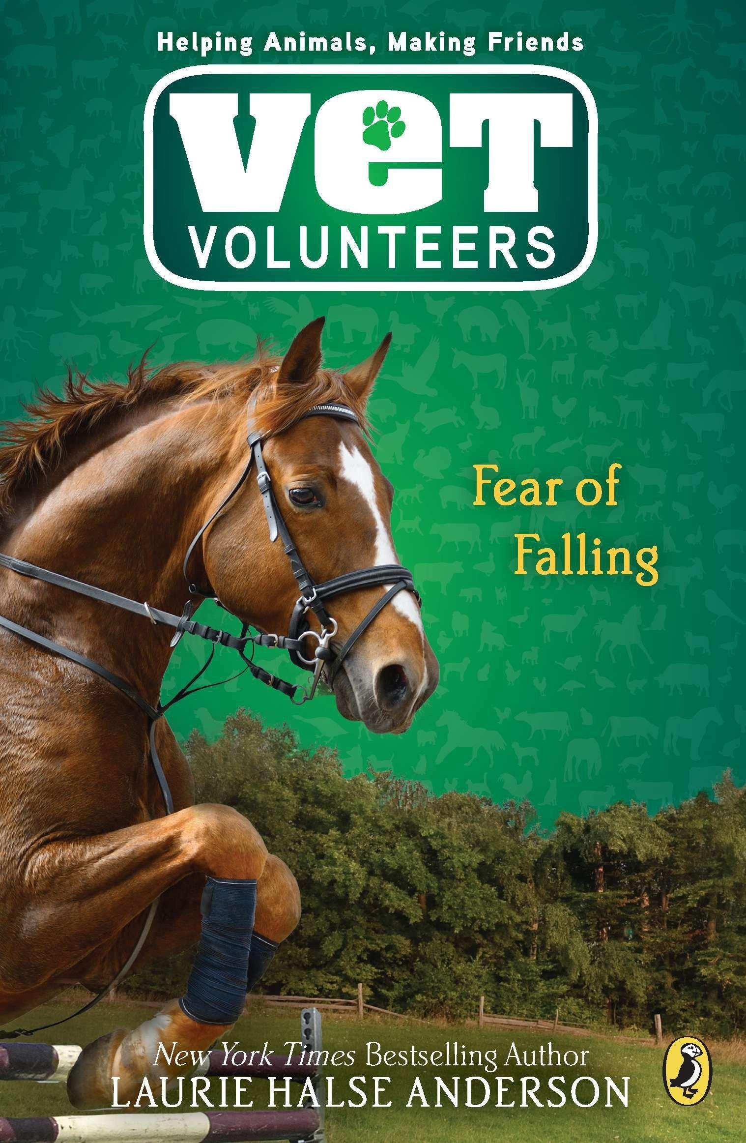 Download Fear of Falling (Vet Volunteers) pdf