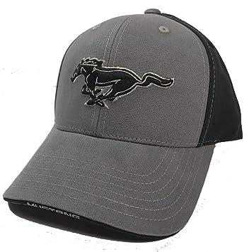 250c687f6951 Amazon.com: RandWSpeedShop Black/Grey Ford Mustang Hat Cap with ...