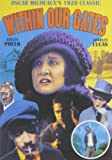 Within Our Gates (Silent) (DVD-R) (1920) (All Regions) (NTSC) (US Import) [Region 1]