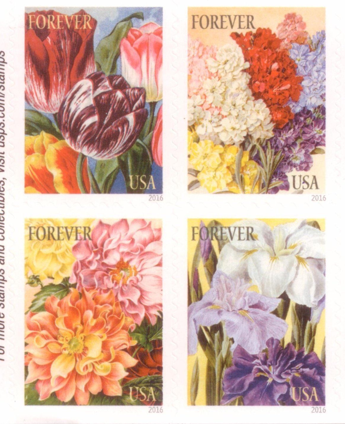 amazon com 100 botanical art usps forever first class postage