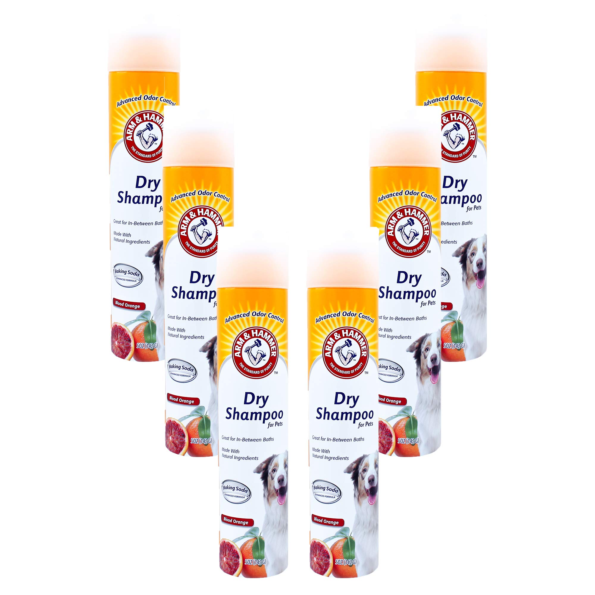 Arm & Hammer Aerosol Dry Shampoo for Dogs | Waterless Shampoo Spray for Dogs & Puppies | Blood Orange, 5 Ounces - 6 Pack by ARM & HAMMER