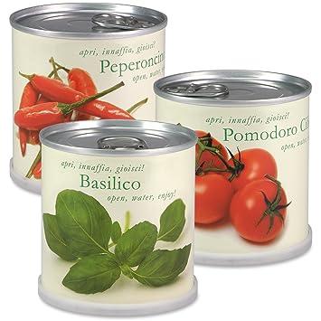 Extragifts Fiori in lattina Set - 3 piante da cucina italiana ...