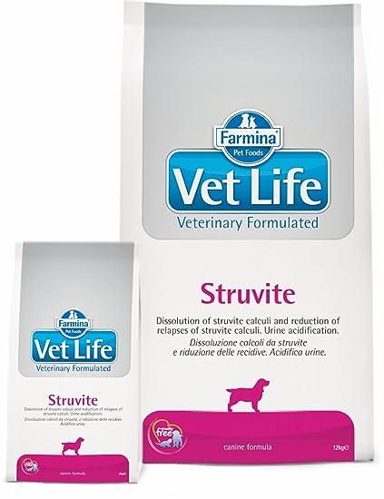 Vet Life struvite Dog, 1er Pack (1 x 12 kg): Amazon.es: Productos para mascotas