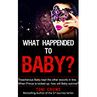 What Happened To Baby?: Treacherous Baby kept the other escorts in line. When Prince is locked up, how will Baby survive? ($7 My Journey Series Book 6)