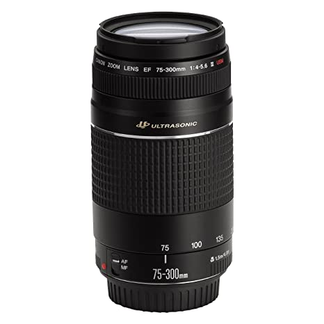 The 8 best canon ultrasonic 75 300mm lens review