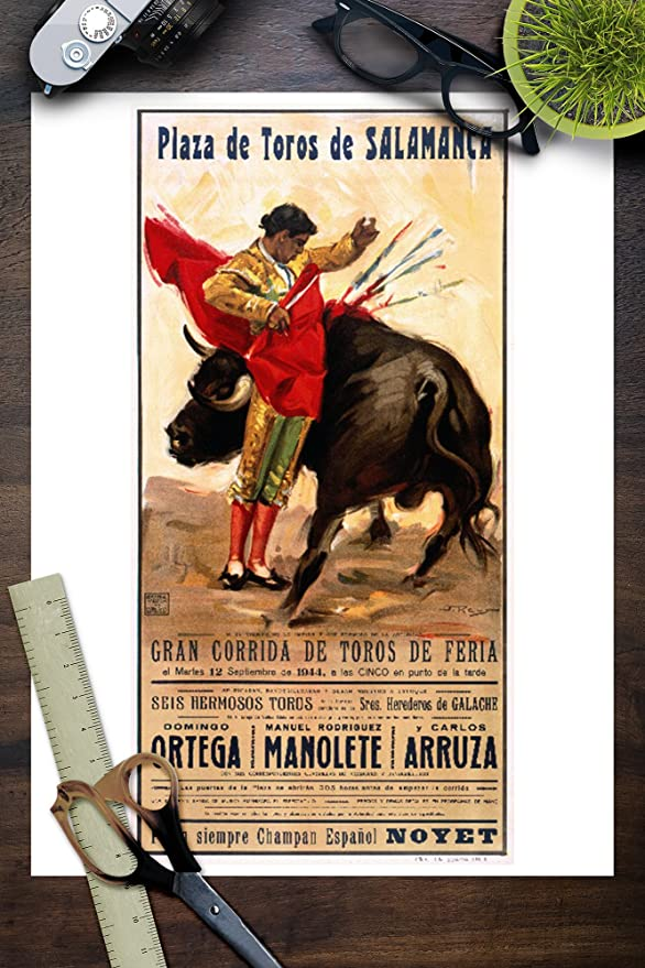 Amazon.com: Plaza de toros de salmanca clásico Cartel ...