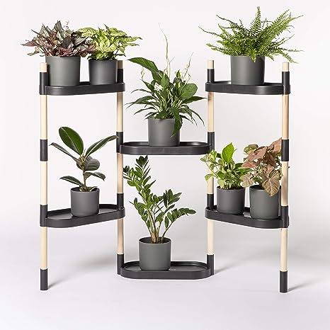 Citysens - Estantería para Plantas, Negro, 6 bandejas