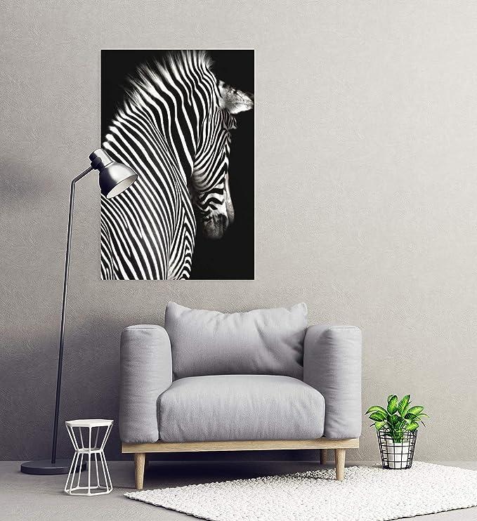 Postereck Poster 0220 Zebra SW Afrika Savanne Natur Tier Streifen Muster