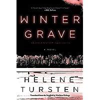 Winter Grave (An Embla Nyström Investigation Book 2)