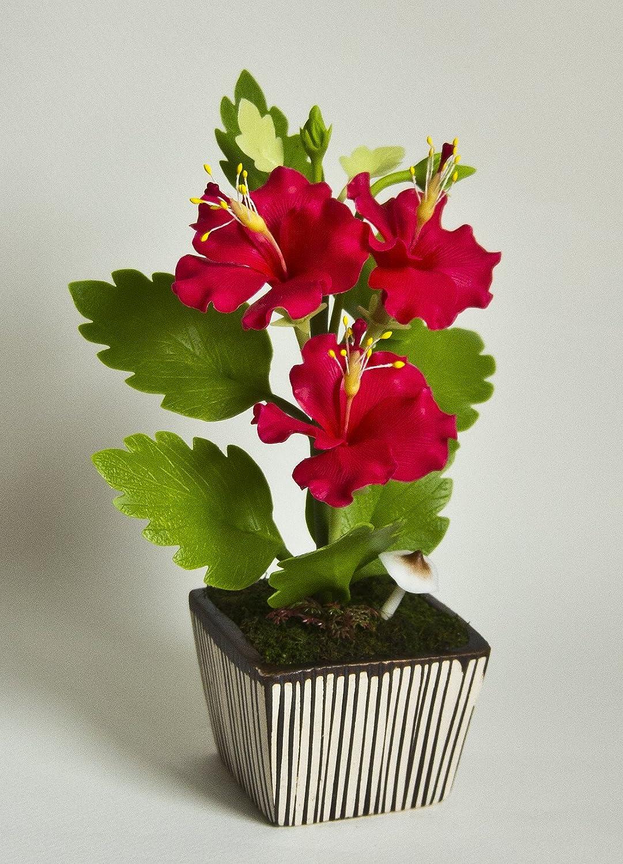 Amazon cutters set hibiscus mini for craft clay gumpaste cake amazon cutters set hibiscus mini for craft clay gumpaste cake decorating chocolate sugarcraft cake decor clay izmirmasajfo