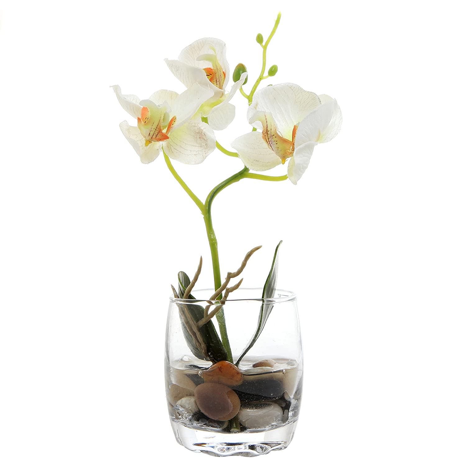 Amazon mygift mini synthetic silk artificial phalaenopsis amazon mygift mini synthetic silk artificial phalaenopsis orchid in glass vase white home kitchen reviewsmspy