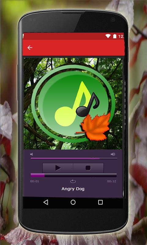 Animales y sus sonidos: Amazon.es: Appstore para Android