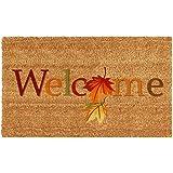 "Home & More 121301729 Fall Beauty Doormat, 17"" x 29"" x 0.60"", Multicolor"
