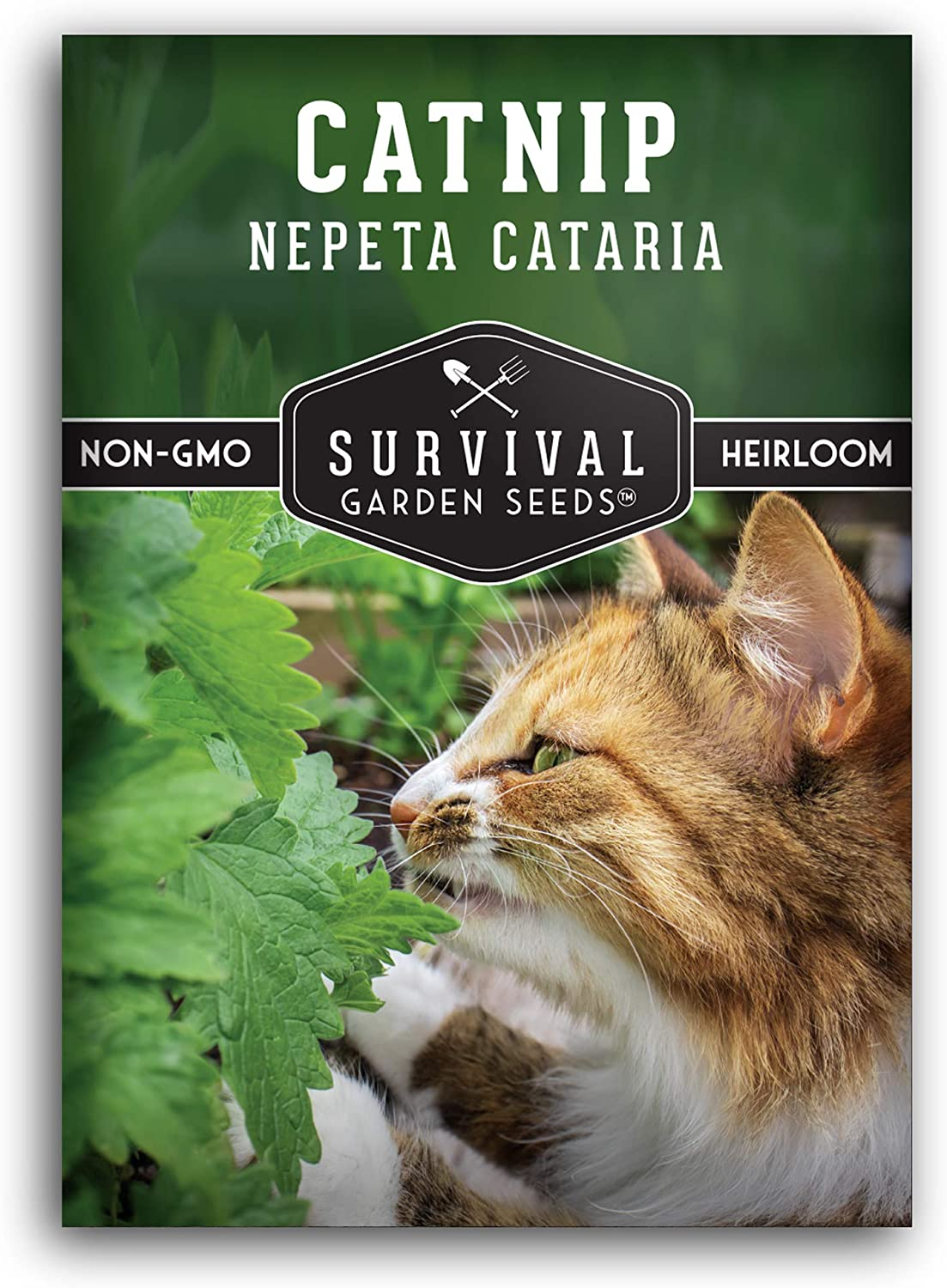 Survival Garden Seeds - Catnip Seed for Planting - Packet with Instructions to Plant and Grow in Your Home Vegetable Garden - Non-GMO Heirloom Variety