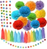 Rainbow Party Decorations Tissue Paper Pom Pom Paper Garland Circle Garland for Rainbow Baby Shower Decorations Rainbow Birthday Decorations Rainbow Party Supplies Rainbow Decorations