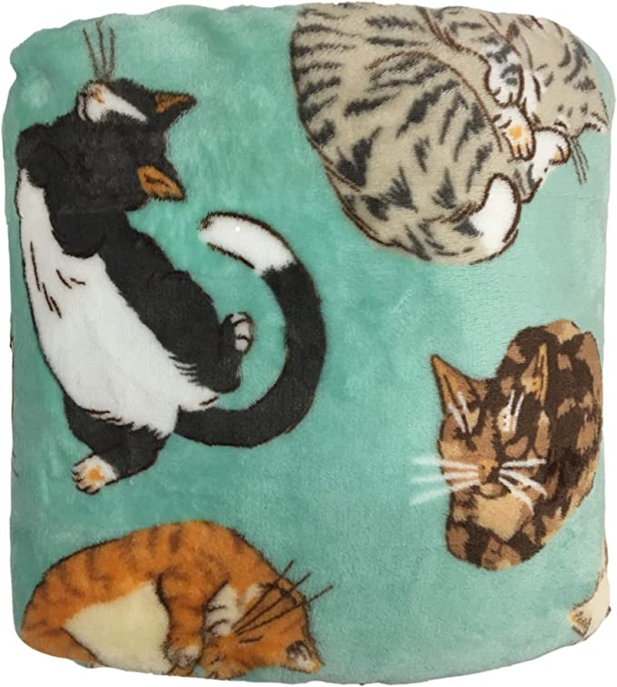 The Big One Plush Throw Blanket Chonky Cat Home Kitchen