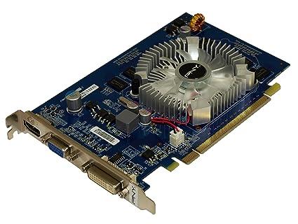 PNY GT 220 GeForce GT 220 1 GB GDDR2 - Tarjeta gráfica ...