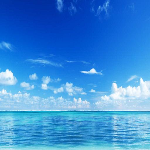 Cottage Vacation Rentals (HotelsFlightsCars)
