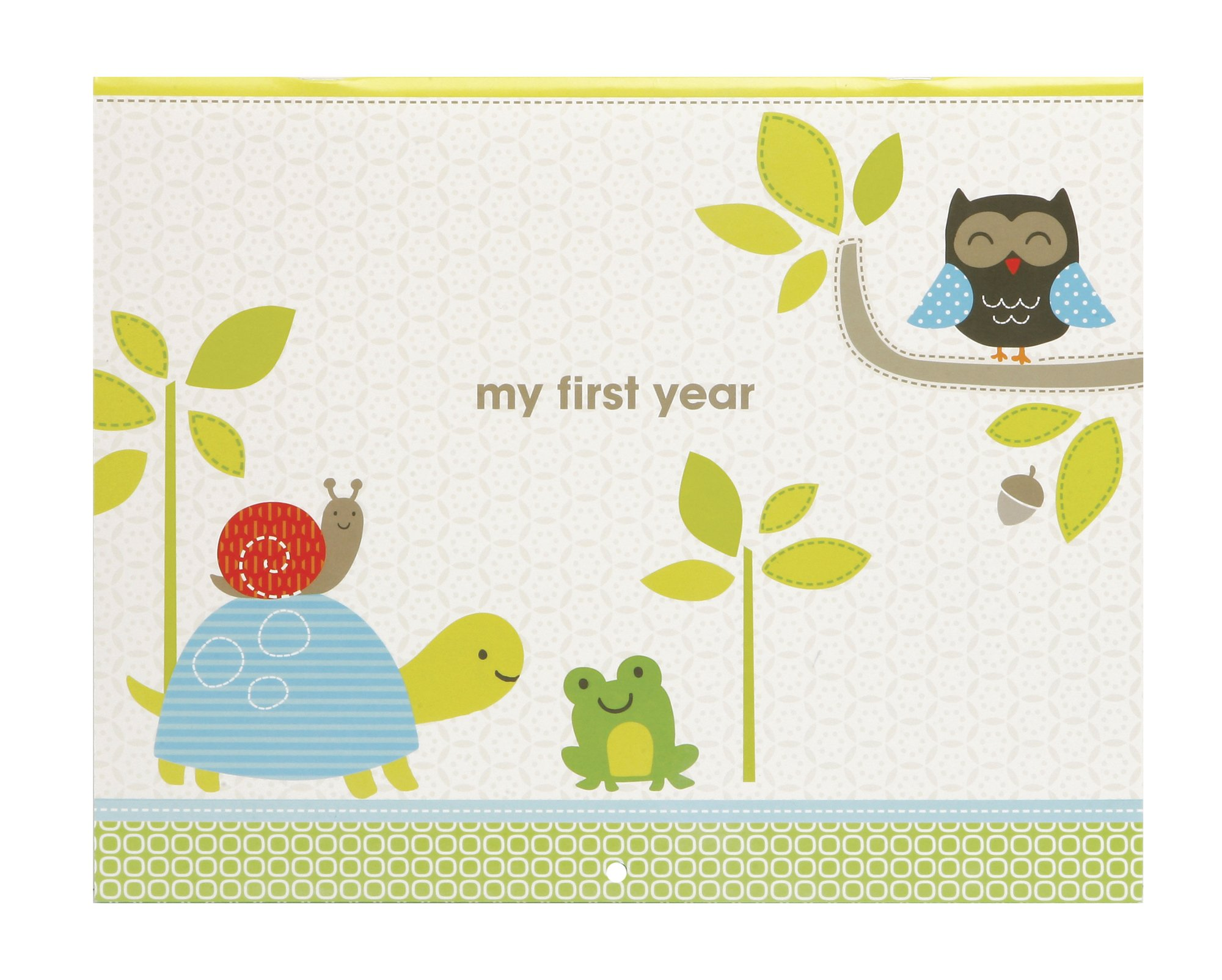 Carter's Green Woodland Animals First Year Calendar for Babies, 11'' L x 18'' H, Includes Sticker Sheet