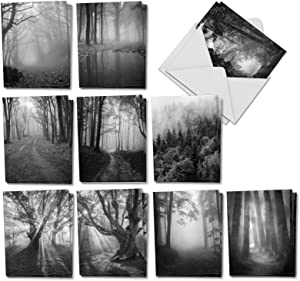 The Best Card Company - 20 All Occasion Blank Greeting Cards (4 x 5.12 Inch) - Landscape Photos (10 Designs, 2 Each) - Misty Woods AM7167OCB-B2x10