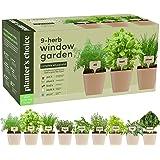 9 Herb Window Garden - Indoor Herb Growing Kit - Kitchen Windowsill Starter Kit - Easily Grow 9 Herbs Plants from Scratch wit