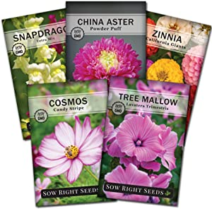 Sow Right Seeds - Flower Seed Garden Collection to Plant, 5 Packets, Snapdragon, Zinnia, Cosmos, Cape Daisy, and Aster; Full Instructions for Planting, Gardening Gift