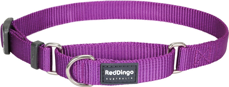 Red Dingo Collier martingale pour chien Taille S 25-39 cm x 15 mm MC-ZZ-HP-15