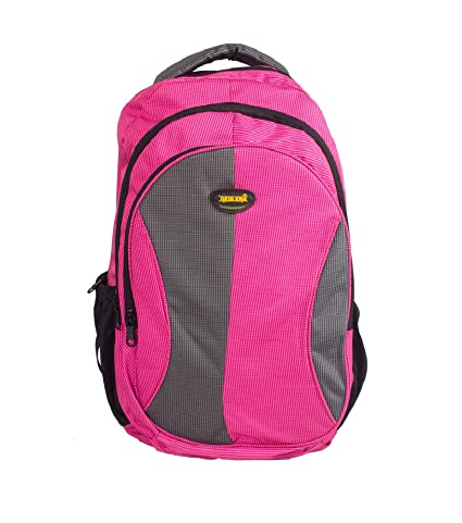 Newera Polyester 40L Pink-Grey School Backpack  school bags for boys ...