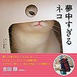 夢中すぎるネコ (写真集)