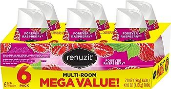 6-Count Renuzit Gel Air Freshener, Forever Raspberry