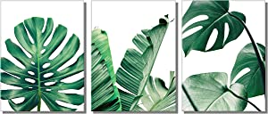 "789Art – Leaf Wall Art Green Plant Decor Simple Life Painting Watercolor Prints Artwork Contemporary Canvas Pictures Wall Decorations for Living Room Office Bedroom Decor(12""x16""x3pcs Framed)"