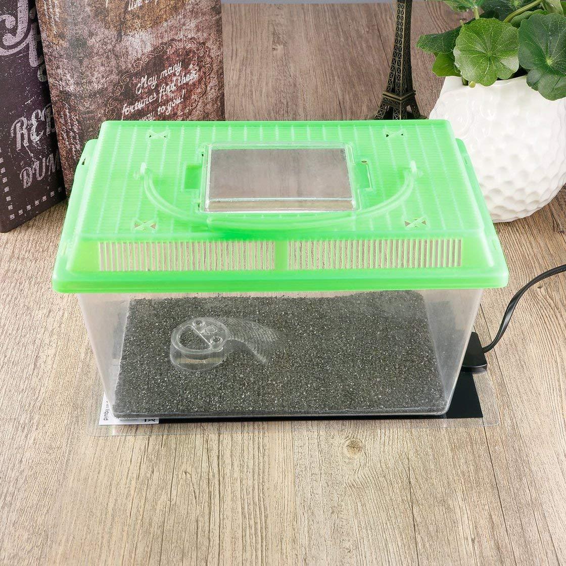 Gwendoll Alfombrilla calefactora de dise/ño Extra Fino 15 x 28 cm Incubadora de cr/ía de Reptiles Almohadilla calefactora para Mascotas Brew EU 220V-240V para Cama de Gatos